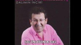 Fahrettin Karaardıç - GELİNLİĞİNLE GEL