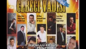 Gudullu Ergun - EMİNEM