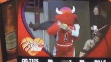 Rahat Durmayan Chicago Bulls Maskotu