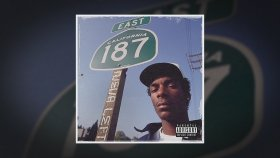 Snoop Dogg ft. Big Tray Deee - Bacc In Da Dayz