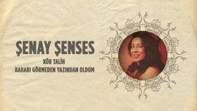 Şenay Şenses - Kör Talih - Baharı Görmeden Yazından Oldum
