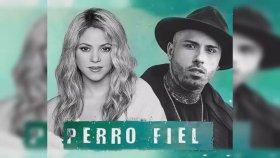 Shakira feat. Nicky Jam - Perro Fiel
