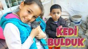Okul Dönüşü Ara Sokaklarda Yavru Kediler Bulduk Oynadık Besledik !!