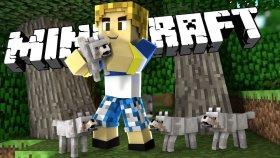 Mınecraft Solo - Yeni Köpeklerim! - Burak Oyunda