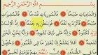 Adiyat  - (Ok Takipli Kur'an-ı Kerim Tilaveti)