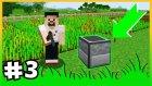 Otomatik Tarlalar Ve Garip Tavuklar - Modlu Survival - Çiftçicraft S2  - #3