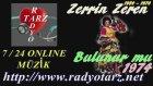 Zerrin Zeren -  Bulunur Mu 1974