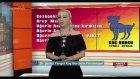 Astrolog Şenay Yangel - 30 Mayıs 2017 Burç Yorumları