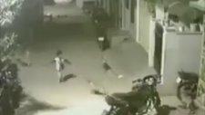 Sokak Köpeklerine Kafa Tutan Koca Yürekli Çocuk