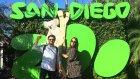 Dünyanın En Büyük Hayvanat Bahçelerinden Birini Gezdik! Vlog#24