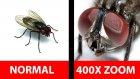 Fotoğraf Çekerken 400 Kat Yaklaştıran Manyak Lens: Nurugo Micro