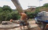 Büyük Ağaç Tomruğunu Kaldıran HeMan