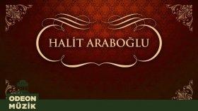 Halit Araboğlu - Rüzgar Mı Attı Seni
