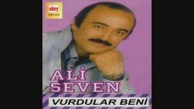 Ali Seven - Gülemiyorum
