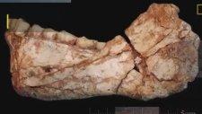 Fas'ta 300 Bin Yıllık İnsan Kalıntısı Bulundu