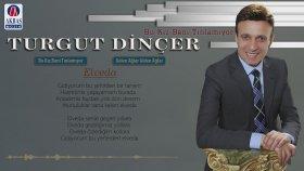 Turgut Dinçer - Elveda