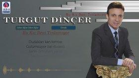 Turgut Dinçer - Bu Kız Beni Tınlamıyor