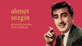 Ahmet Sezgin - Erzurum Dağına Kara Gidelim