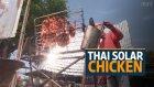 Tavukları Güneşte Pişiren Tayland'lı