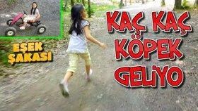 Go Kart Bisiklet Gezisinde Köpek Geliyor Eşek Şakası !!
