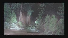 Hulk vs Monster Dogs Fight Scene - 2003 - HD