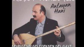 Neşet Abalıoğlu - SEVDİĞİM GELECEKSEN GEL GAYRİ