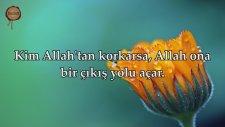 Talak Suresi - İdris Abkar   fussilet Kuran Merkezi