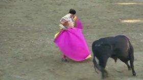 Boynuz Darbeleri ile Matador Öldüren Boğa