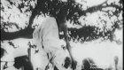 Gandi Tuz yürüyüşünde (1930)