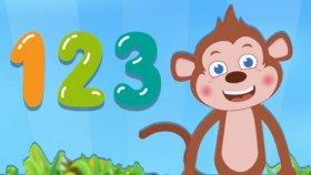Maymi Sayıları Öğretiyor - Çocuklar İçin Sayılar - Okul Öncesi Eğitim
