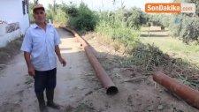 Aydın'da Evlerin Ardından Tarlaları da Jeotermal Su Bastı