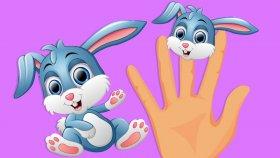 Parmak Ailesi - Çiftlik Hayvanları - Çocuklar İçin Hayvanlar