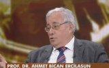 Ali Emiri Efendi'nin Divan ı Lügati't Türk Kitabını Bulması