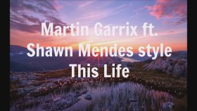 Martin Garrix - Ft. Shawn Mendes Style - This Life