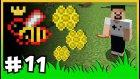 Arım Balım Peteğim, Yeni Arı Kovanları ve Arıcılık - ÇiftçiCraft S2  - #11