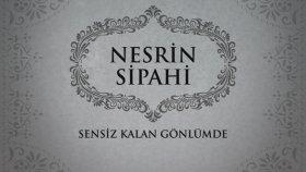 Nesrin Sipahi - Sensiz Kalan Gönlümde (45'lik)