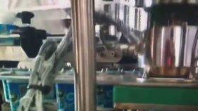 Plastik Şişe Sıvı Dolum Kapatma Makinesi