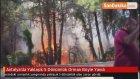 Antalya'da Yaklaşık 5 Dönümlük Orman Böyle Yandı