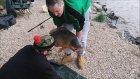 Kaşla Göz Arasında Balığı Kaçması