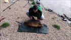 Kaşla Göz Arasında Balığın Kaçması