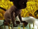hanzo - 3d animasyon