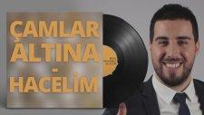 Mustafa Taş - Çamlar Altına - Hacelim
