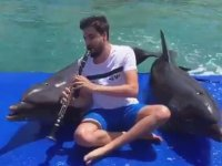 Klarnet Sanatçısı Serkan Çağrı'nın Yunuslarla Düet Yapması