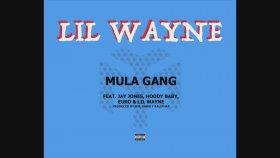 Lil Wayne - Mula Gang Feat. Jay Jones, HoodyBaby
