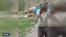 Sosyal Medyayı Sallayan Video: Ola Hani Kablo?