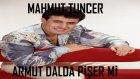 Mahmut Tuncer - Armut Dalda Pişer mi