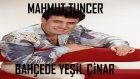 Mahmut Tuncer - Bahçede Yeşil Çınar