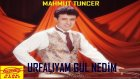 Mahmut Tuncer - Urfalıyam Gül Nedim