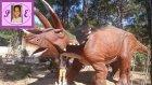 Çılgın Bir Gün Dinopark ( Dinozor Park ) Piknik Gezinti