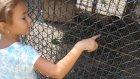 Elif ve Lera mini hayvanat bahçesi geiziyor, eğlenceli çocuk videosu